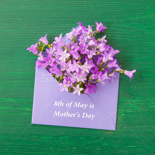 Purple bellflowers with envelope Stock photo © BarbaraNeveu