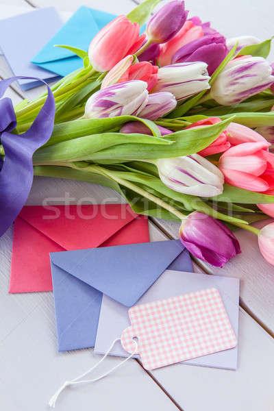 Colorful tulips on purple Stock photo © BarbaraNeveu