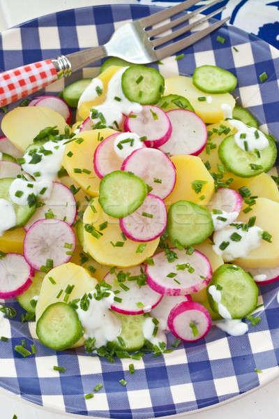 ポテトサラダ 新鮮な キュウリ 胡瓜 青 ストックフォト © BarbaraNeveu