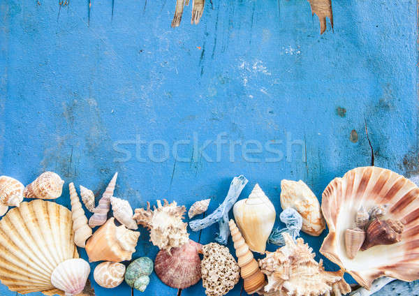 Weathered wooden background with sea shells Stock photo © BarbaraNeveu