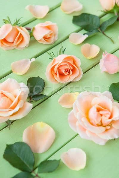 Fraîches rose roses rustique bois fleur Photo stock © BarbaraNeveu