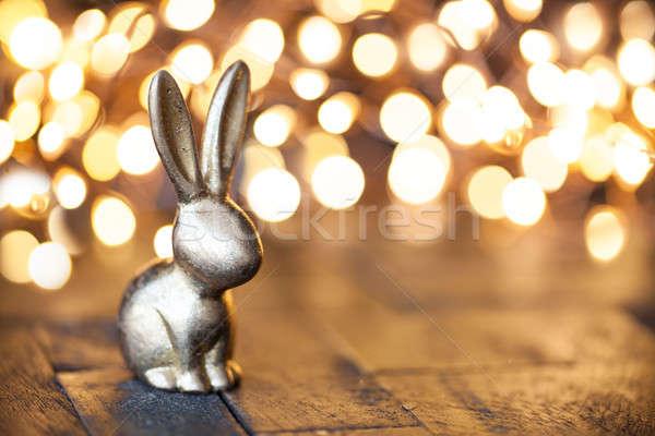 Wenig golden Osterhase Ostern glücklich Kaninchen Stock foto © BarbaraNeveu