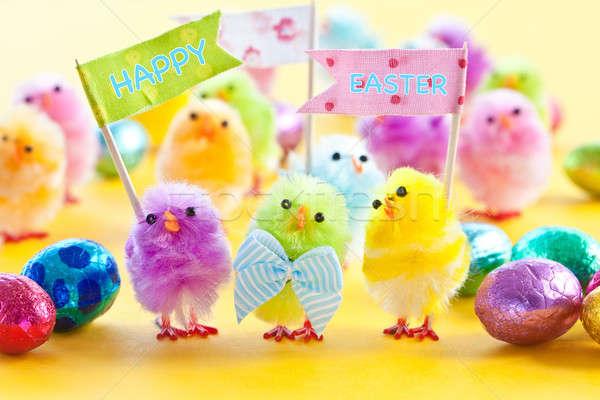 Coloré Pâques poussins lumineuses couleurs Photo stock © BarbaraNeveu