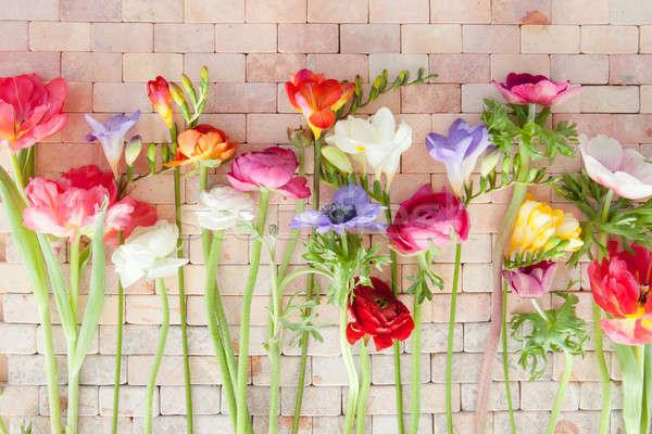 Colorato · fiori · di · primavera · rustico · pietra · piastrelle