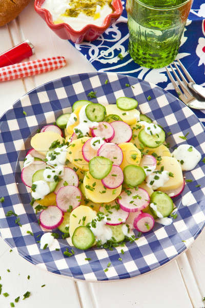 Potato salad with fresh cucumber Stock photo © BarbaraNeveu