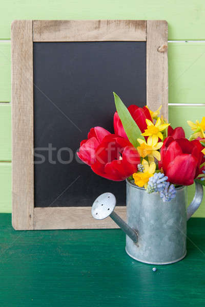 Red tulips in vintage watering can Stock photo © BarbaraNeveu
