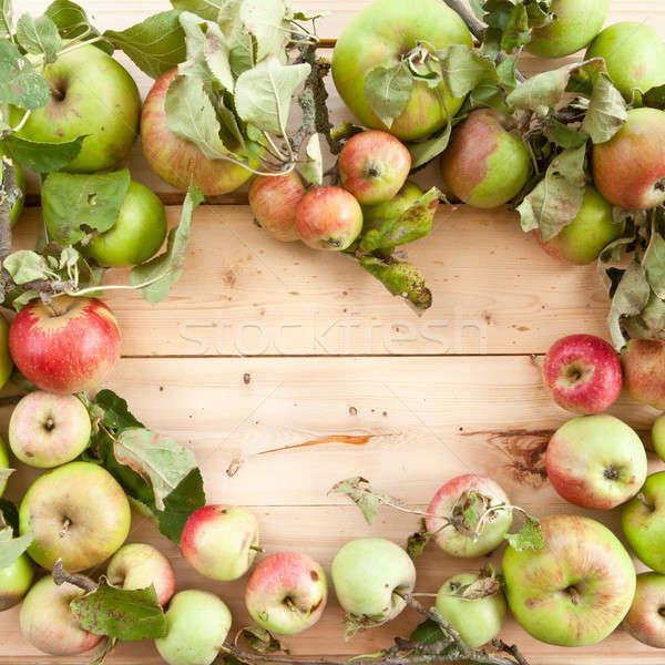 Various organic apples Stock photo © BarbaraNeveu