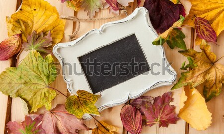 Chalkboard with fallen leaves Stock photo © BarbaraNeveu