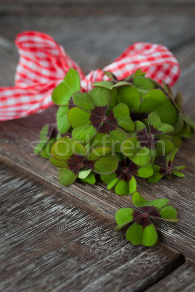 Little bouquet of lucky clovers Stock photo © BarbaraNeveu