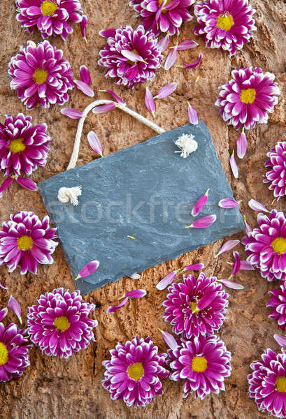 Fresh flowers on wooden background Stock photo © BarbaraNeveu