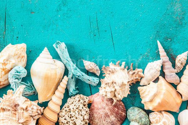 Yıpranmış ahşap deniz kabukları plaj Stok fotoğraf © BarbaraNeveu