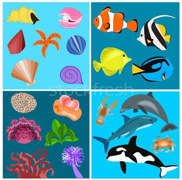 морем набор иллюстрация различный морских животных растений Сток-фото © BarbaRie