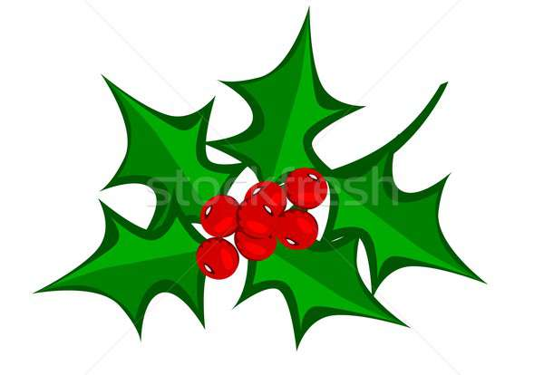 Meyve örnek kış Noel tatil Stok fotoğraf © BarbaRie