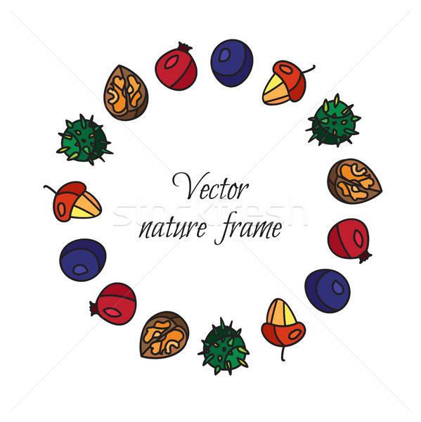 Vintage nuts, berry, fruits frame Stock photo © barsrsind