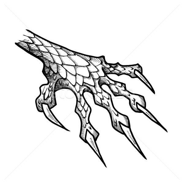 Stock fotó: Sárkány · szörny · mancs · karmok · vad · tetoválás