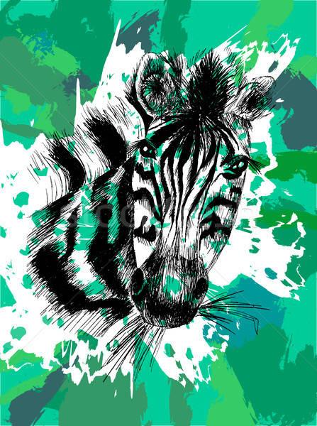 Vecteur zèbre eps tête Safari animaux Photo stock © barsrsind