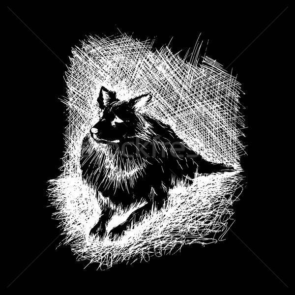 dog in anddrawn engraving style by pen, retro hound Stock photo © barsrsind