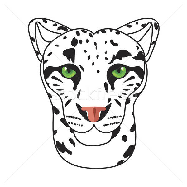 Sauvage chat Leopard neige bars visage Photo stock © barsrsind