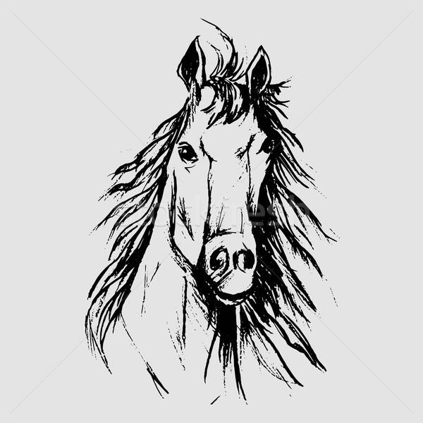 Horse scetch Stock photo © barsrsind