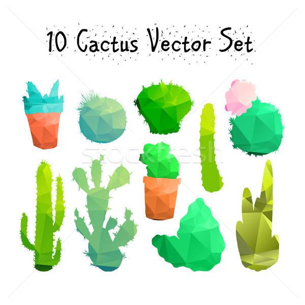 Hand Drawn Isolated Cactuses Set Stock photo © barsrsind