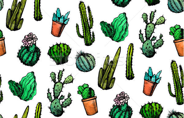 Hand Drawn Isolated Cactuses Seamless Pattern Stock photo © barsrsind