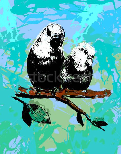 Illustratie twee vogels papegaaien familie vector Stockfoto © barsrsind