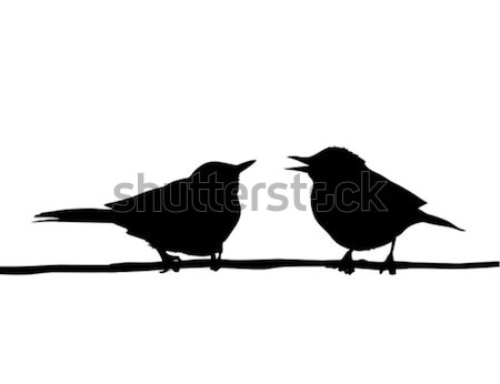 Vettore silhouette uccello ramo natura estate Foto d'archivio © basel101658