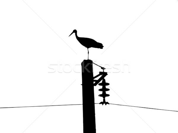 Vektor Zeichnung Silhouette Kran elektrische Pol Stock foto © basel101658