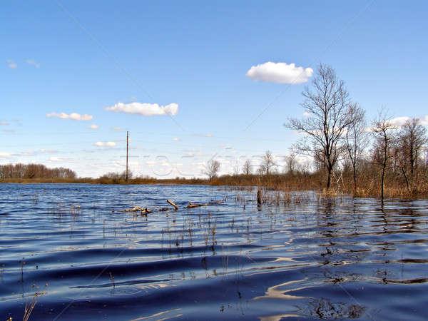 наводнения небе дерево природы зеленый бассейна Сток-фото © basel101658