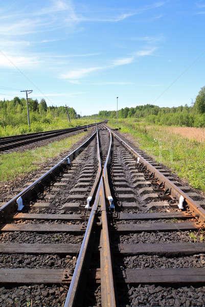 Vasút természet fém rozsda szállítás vonal Stock fotó © basel101658