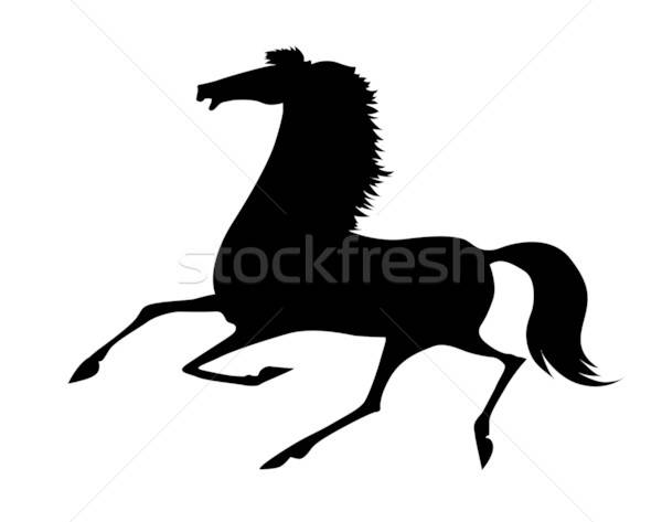 vector silhouette running horse on white background Stock photo © basel101658