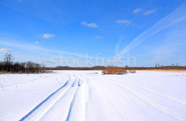 Tél út mező fa természet terv Stock fotó © basel101658