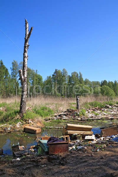 garbage pit in wood Stock photo © basel101658