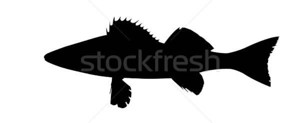 Vektor Zeichnung Silhouette Fisch Design Hintergrund Stock foto © basel101658