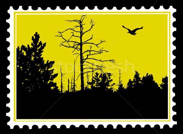 Vettore disegno sfondo arte segno mail Foto d'archivio © basel101658