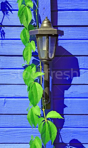 Edad antorcha pared casa hierba Foto stock © basel101658