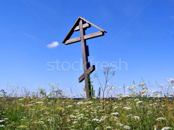 solitary grave cross on field       Stock photo © basel101658