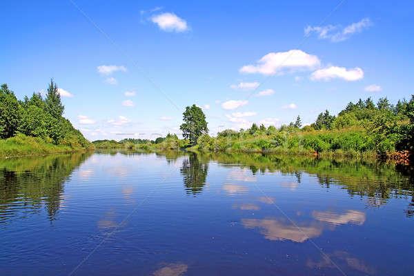 Eiche Küste Fluss Natur Sommer Bereich Stock foto © basel101658