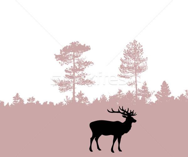 Vector tekening silhouet herten hout boom Stockfoto © basel101658