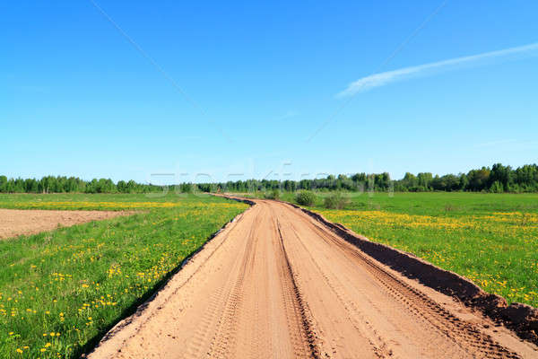 rural sandy road Stock photo © basel101658