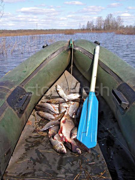 Peces barco agua primavera paisaje lago Foto stock © basel101658