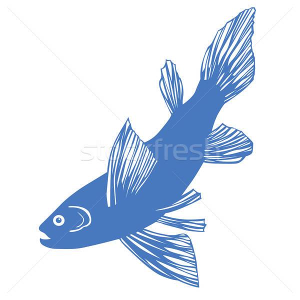 Vector silueta peces blanco resumen fondo Foto stock © basel101658