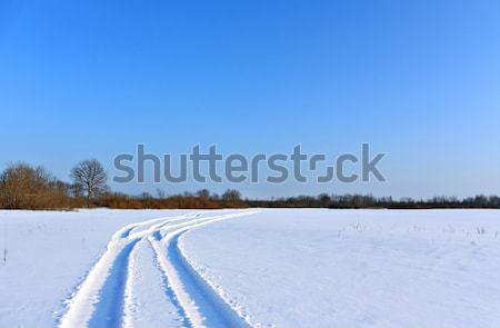 Invierno paisaje árbol carretera madera naturaleza Foto stock © basel101658
