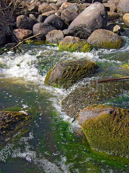Steen rivier stroom water bos natuur Stockfoto © basel101658