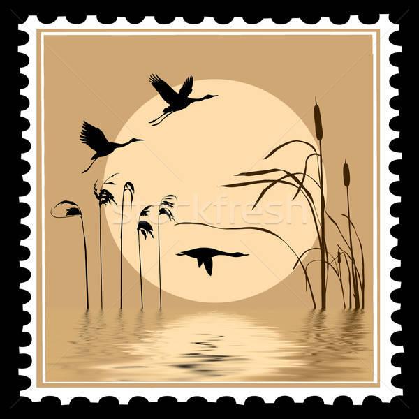 Vettore silhouette battenti uccelli francobolli design Foto d'archivio © basel101658