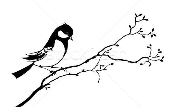 vector silhouette of the bird on branch tree Stock photo © basel101658