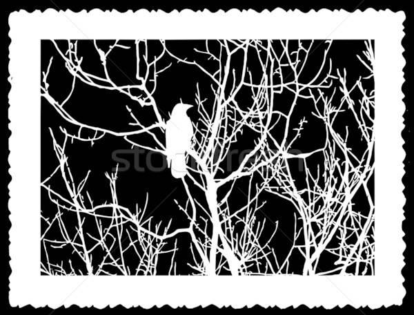 Vektör çizim yırtılmış levha kâğıt doğa Stok fotoğraf © basel101658