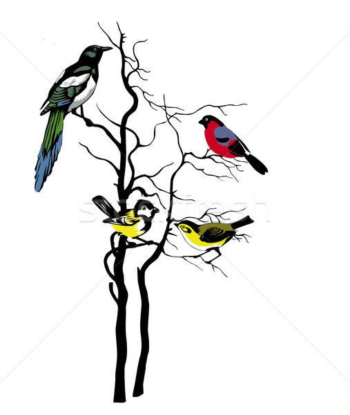 Foto stock: Vetor · silhueta · aves · árvore · natureza · fundo