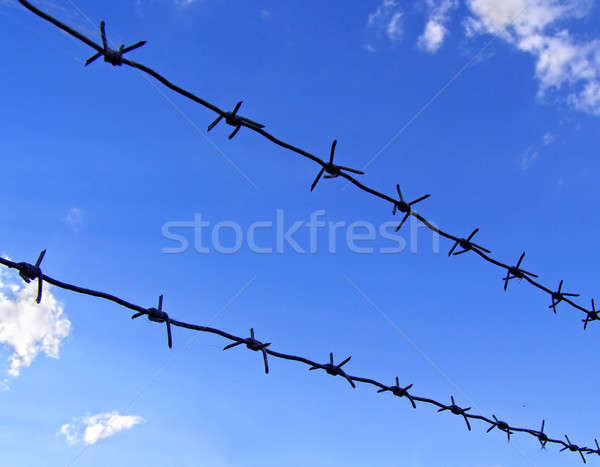 Barbed wire and blue sky Stock photo © basel101658