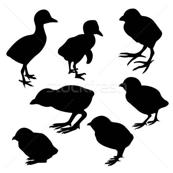 Vector tekening silhouet natuur ontwerp achtergrond Stockfoto © basel101658